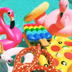 pool floats.jpg